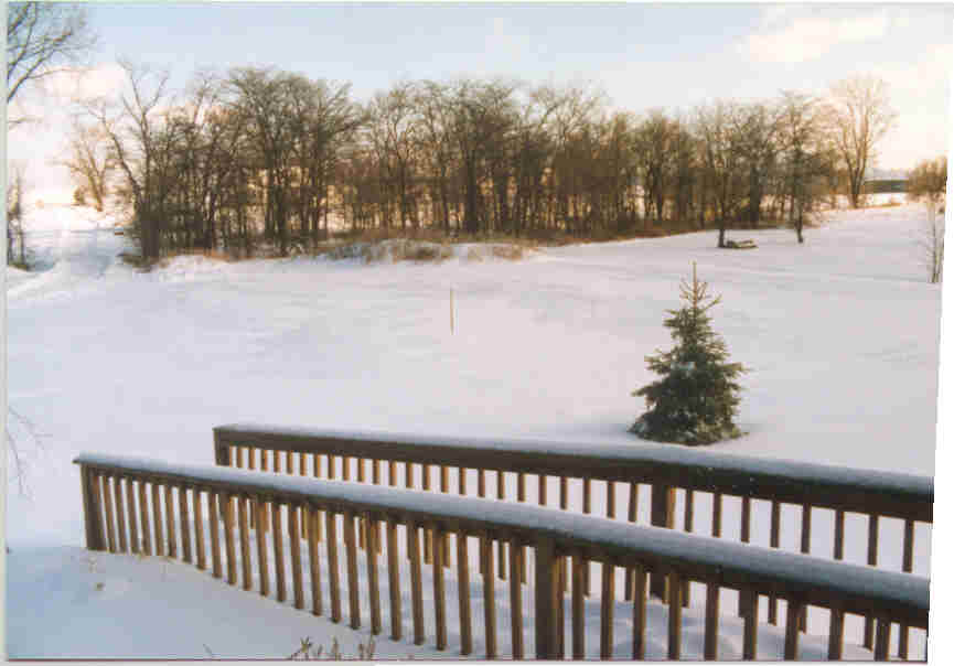 winter_iin_ohio_1999.jpg